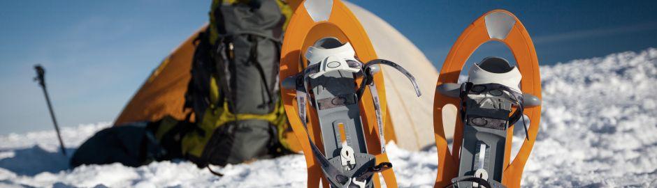 Bien préparer son voyage en Antarctique credit renouvelable franfinance