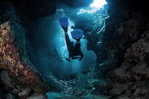 Vacances : les meilleurs spots de plongée - Franfinance